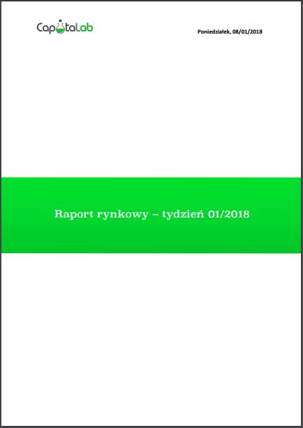 raport 1